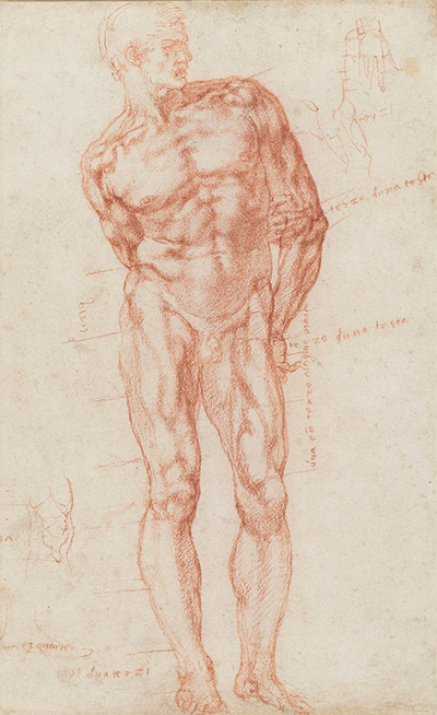 A Male with Proportions Indicated Michelangelo