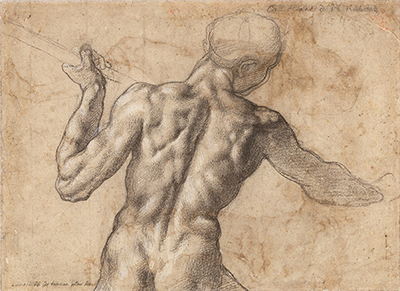 Study of the Torso of a Male Nude Seen from the Back Michelangelo